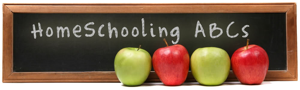Is Home Schooling your Kids Damaging them Socially?