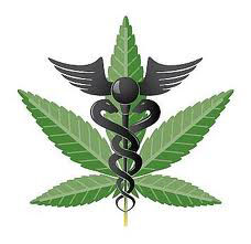 If Society is the Disease, is Cannabis the Cure?